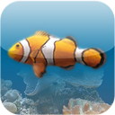 SereneScreen Marine Aquarium for iOS